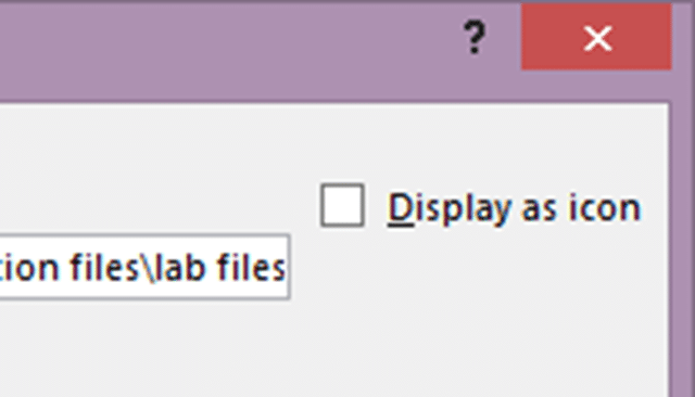 Insert Object - Display as Icon