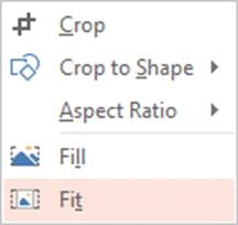 crop fit