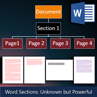 word sections concepts by Dr. Nitin paranjape