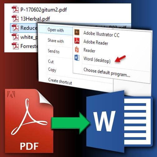 Edit PDF documents in Word