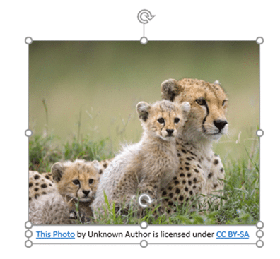 PowerPoint clipart - with attribution