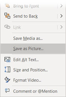 save any video frame - right click menu option to Save as picture.