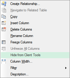 hide columns from client tools